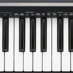 Roland A-49 MIDI Keyboard Controller - Black