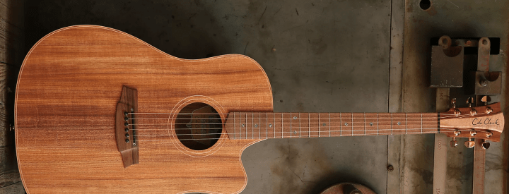 Video: Cole Clark Fat Lady 2 Pickup System Demo