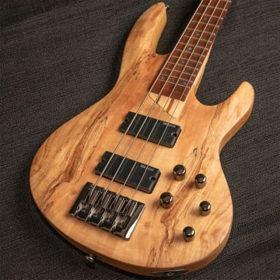 ESP LTD B-204 Bass w/ Spalted Maple Top for sale