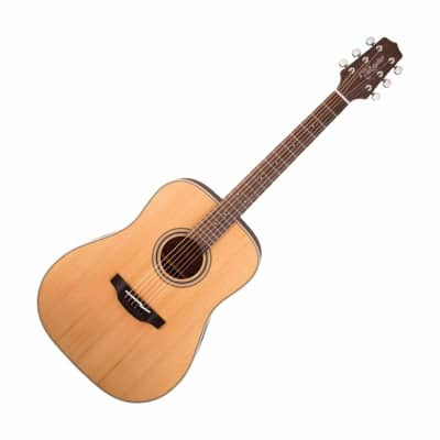 Takamine Dreadnought Acoustic Guitar Solid Top GD20-NS for sale