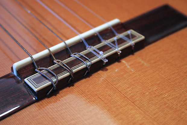 a158b4d7c50 Pavan TP-20 Spanish Classical Guitar Cedar-Rosewood-Ebony with Hard Shell  Case