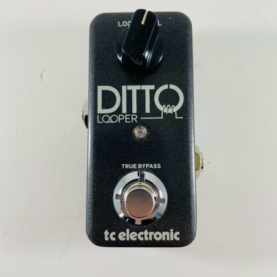 TC Electronic Ditto Looper *Sustainably Shipped*