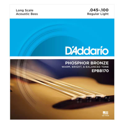 D'Addario EPBB170 Phosphor Bronze Acoustic Bass, Long Scale, 45-100