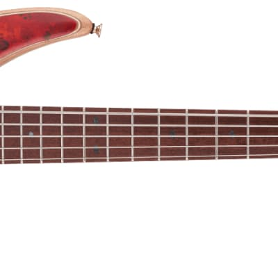 Jackson PRO SERIES SPECTRA BASS SBP V, CARAMELIZED JATOBA FINGERBOARD, Transparent Cherry Burst