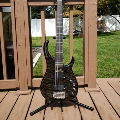 Modulus Q5 2000 Blackstone Black Lane Poor Mike Pope for sale