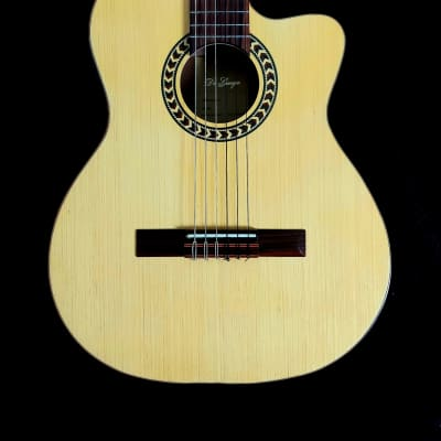 Di Giorgio   Classic Electric Acoustic Brazilian  Wood ! $800 Or Best Offer !! 2012 for sale