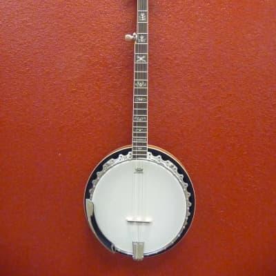 Washburn B10 5 String Banjo - Free shipping lower USA! for sale