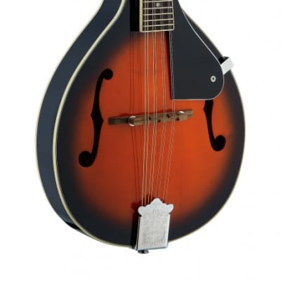 Stagg M20 S Solid Spruce Top Rosewood Fingerboard Nato Neck Bluegrass 8-String Mandolin