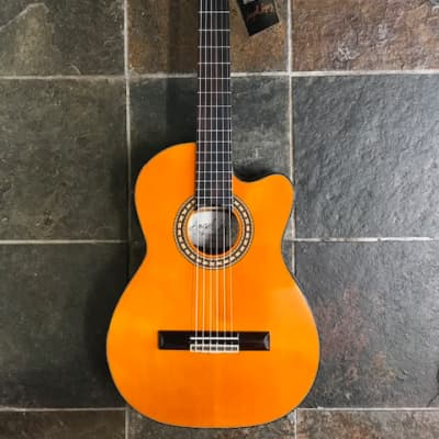 Angel Lopez SIL TCE HG Electro Classic for sale
