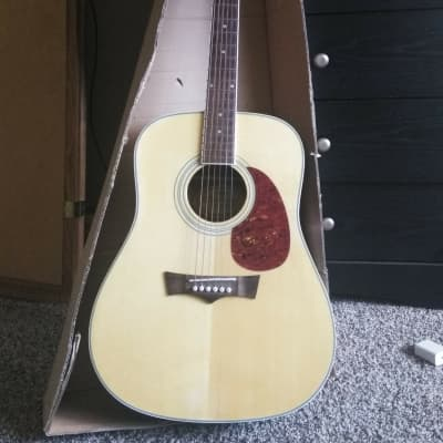 Briarwood Peavey Briarwood Acoustic/Electric for sale