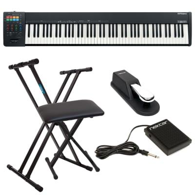 Roland A-88MKII MIDI Keyboard Controller, Keyboard Stand, Bench, Sustain Pedal, Nektar NP-1 Bundle