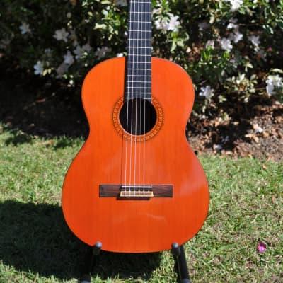 Tama Classical Guitar model 3550 for sale