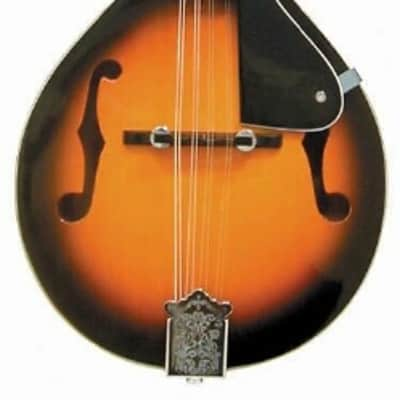 J. Reynolds JRMAN10 Mandolin - Tobacco Sunburst Matte Finish for sale