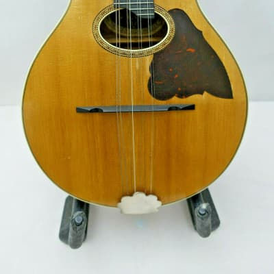 Vega Two Point Mandolin with Cylinder Back c.1916 Very Fine Instrument for sale
