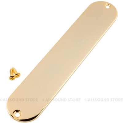 BLANK, NO HOLE  Steel Control Plate for Fender Telecaster Tele Guitar - GOLD