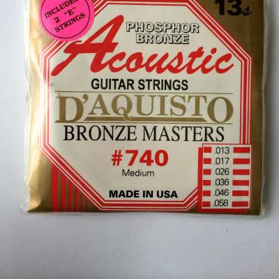 D'Aquisto Acoustic Bronze Masters 740M for sale