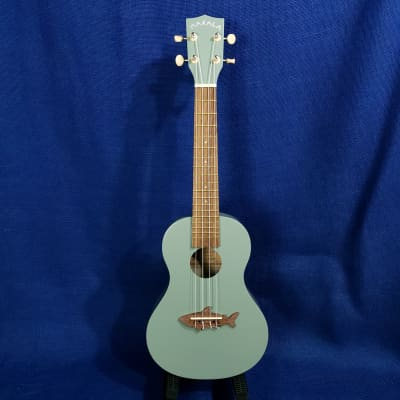 Mims Ukes: Makala Shark by Kala Concert MK-CS/GRY Shark Fin Grey Wood/Composite Setup Ukulele
