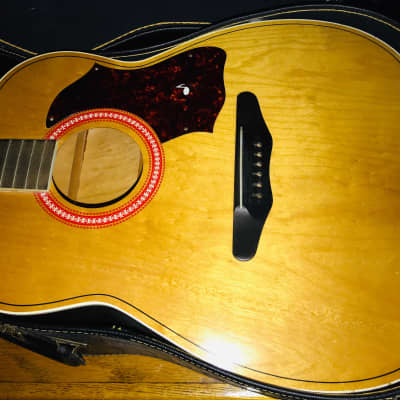 Final Reduction! 1963 Harmony H159 All Birch Clear Natural Finish!