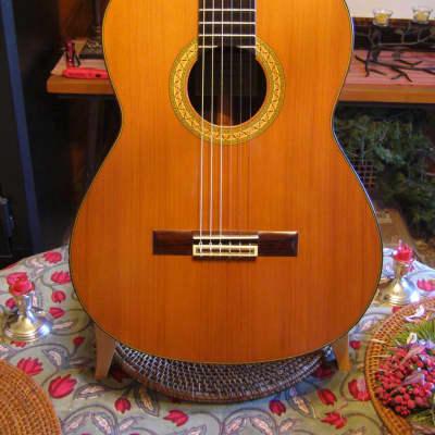 Classical Spanish Guitar, Redwood, Paulino Bernabe Model 30 for sale