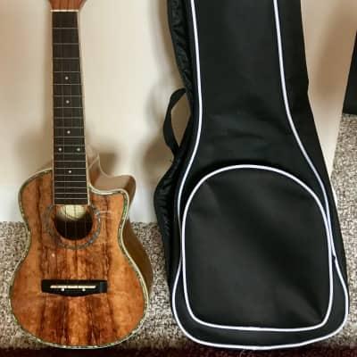Mitchell Koa Concert Ukulele for sale
