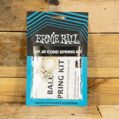 Ernie Ball P06152 Cord/Spring Kit for VP Jr.