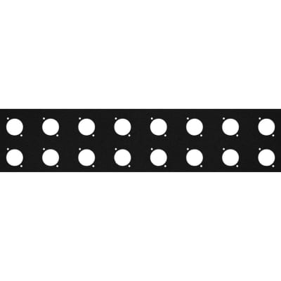 Elite Core RP2U-16D Rack Panel with 16 D-Series Punch-Outs, 2U