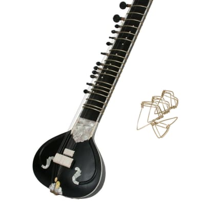 G-Rosul Package Includes: Professional Electric Sitar w/ Gig Bag by G-Rosul + Mizrabs