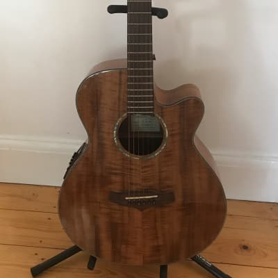 Tanglewood TW28CE X OV for sale