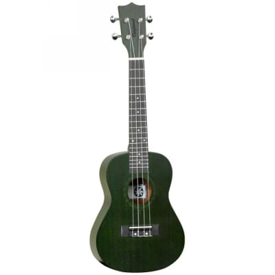 Tanglewood TWT3  Green Forest
