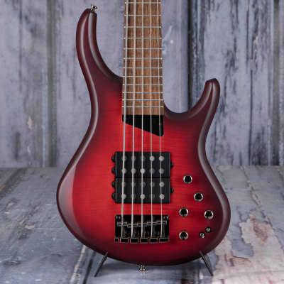 MTD Kingston Super-5 5-String Bass, Dr. Brown's Burst