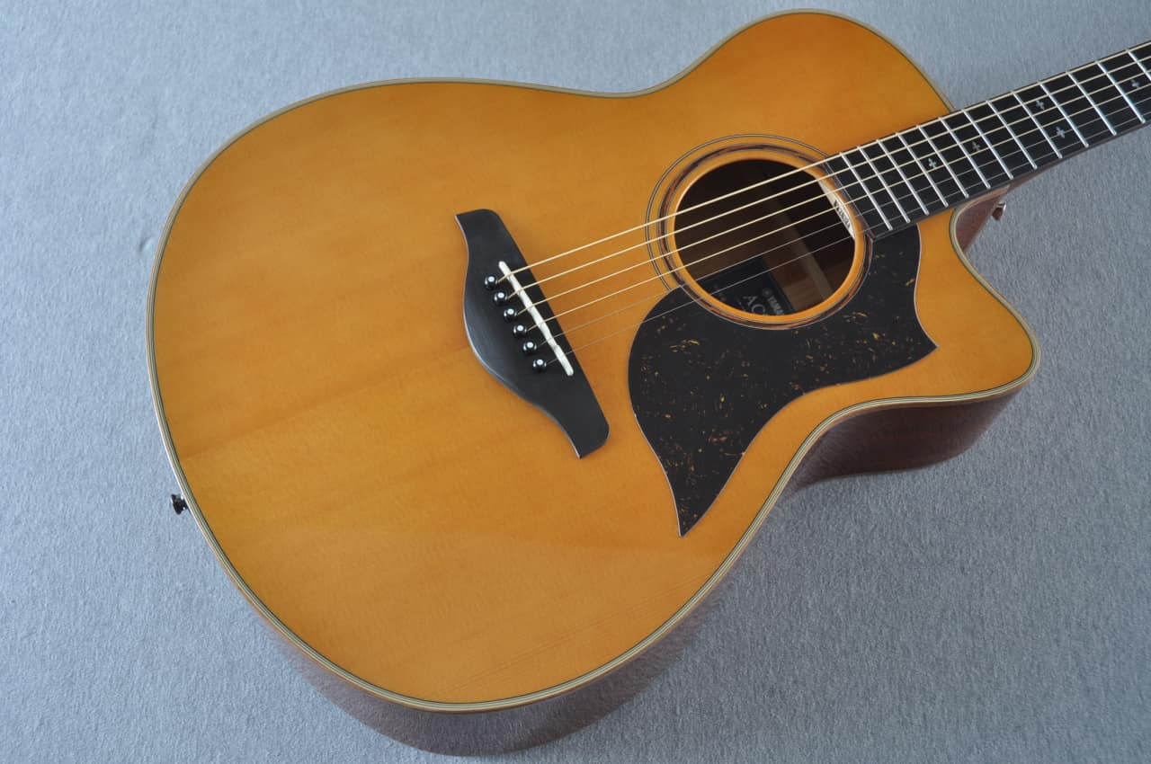 Yamaha Dynamic Guitar No