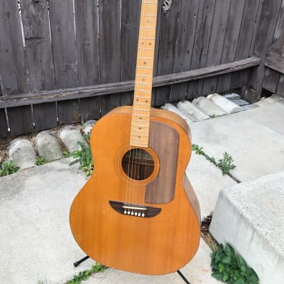 Ernie Ball :: Earthwood  Jumbo Acoustic :: USA :: 1972 Vintage for sale