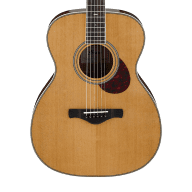 Ibanez AVM10 Artwood Vintage Thermo Aged Acoustic Guitar - Natural High Gloss for sale
