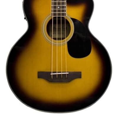 Beaver Creek acoustic bass for sale