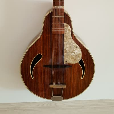 Höfner Mandolin, Vintage 1960 for sale