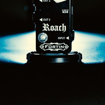 FORTIN ROACH