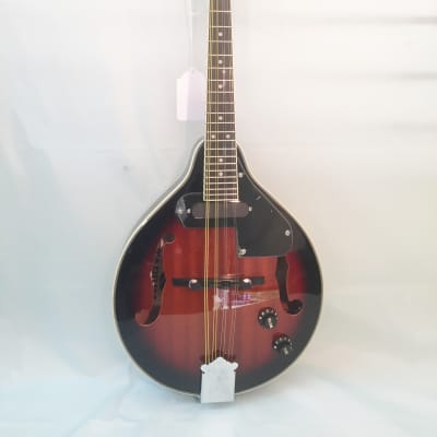 Stadium A-Style Acoustic/Electric Mandolin-Includes Setup-Case/Bag Available!