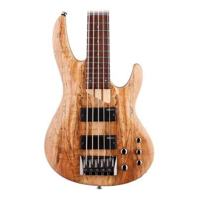 ESP LTD B-205SM 5-String Electric Bass Guitar