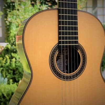 David Daily Classical Guitar for sale