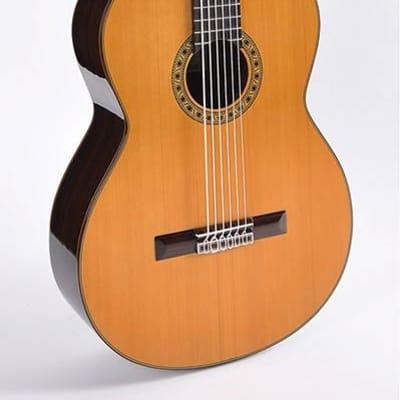 Esteve Special Model PS75-6 contrabass guitar for sale