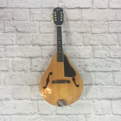 Hondo II A-Style Mandolin for sale