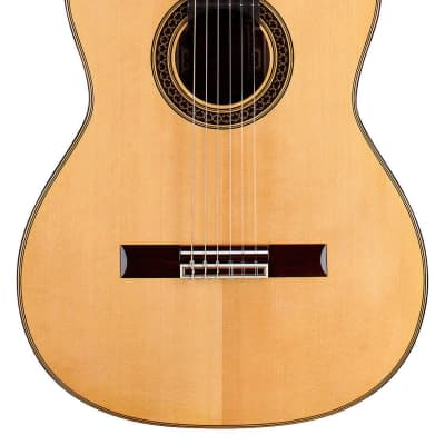 David Daily 2015 Classical Guitar Spruce/CSA Rosewood for sale