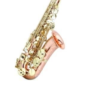 Ravel RAS302RB Paris Series Pro Alto Sax
