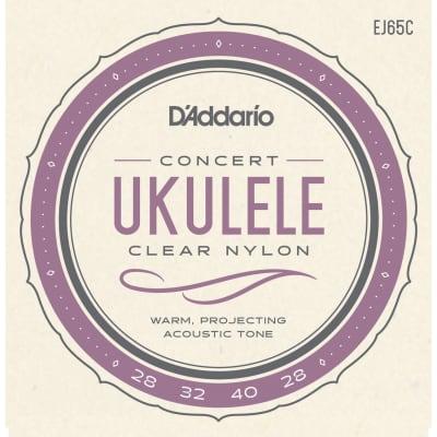 D'Addario EJ65C Ukulele Concert