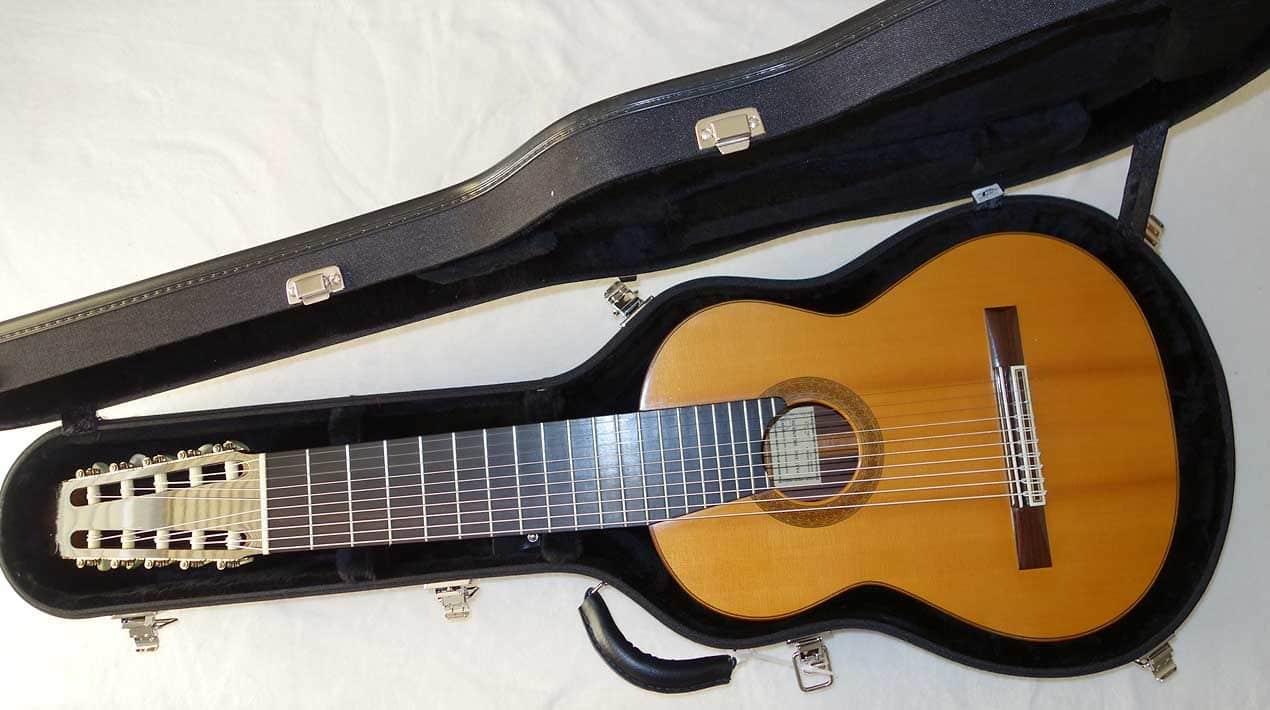 new ameritage custom guitar case for 10 string 8 string reverb. Black Bedroom Furniture Sets. Home Design Ideas