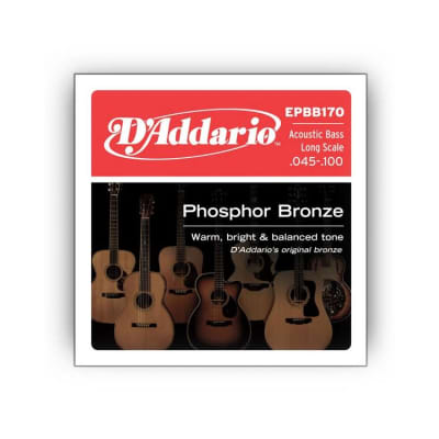 NEW D'Addario EPBB170 Phosphor Bronze Acoustic Bass Long Scale, .045-.100