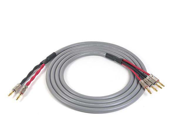 Canare 4S11 Bi-Wire Speaker Cable | Gray | Premium Bananas | | Reverb