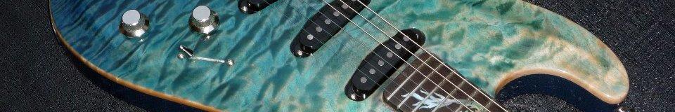 WR Guitars Custom Shop