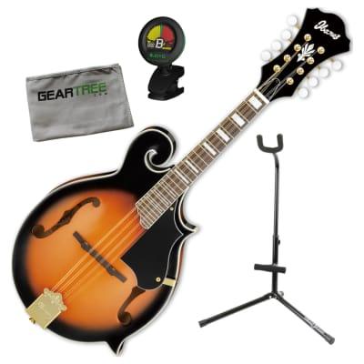 Ibanez M522SBS F-Style Acoustic Brown Sunburst Mandolin Bundle w/Tuner, Stand, Cloth