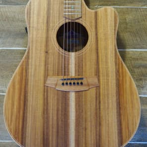 Cole Clark Fat Lady 2EC Blackwood Blackwood with Hard Case for sale